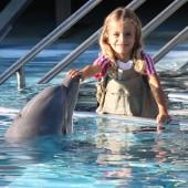 Selwo Marina – Dolphin and Marine Park
